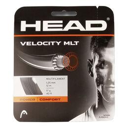 Velocity MLT 12m pink